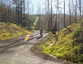 bike rider on trail